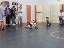 Beatrice Novice Tournament